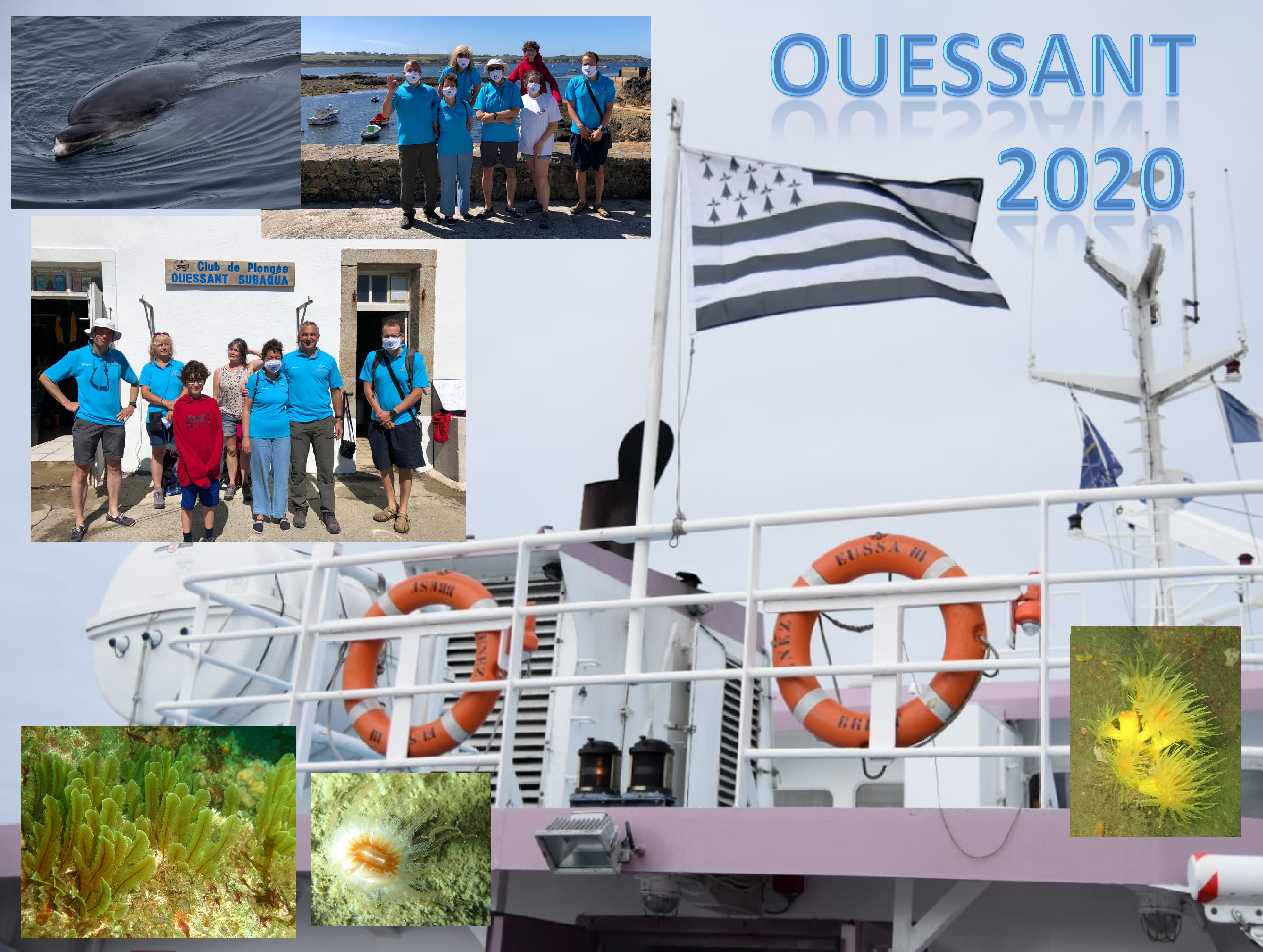 Ouessant 2020